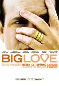 Big Love (2011) poster