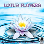 Lotus Flowers - Relaxing Music for Yoga Exercise (2013) ExtraBall Records