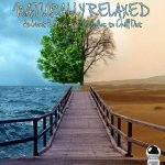 Naturally Relaxed: Ambient & New Age Melodies to Chill Out (2014) ExtraBall Records