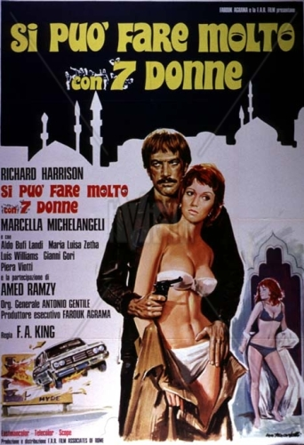 Si puo fare molto con sette donne (1972) film poster
