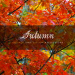 Autumn: Orange and Yellow Reflections (2015) Relaxing Music