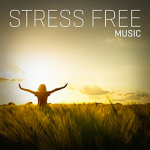 Various Artists - Stress Free Music (2016) Shallow Pools Music